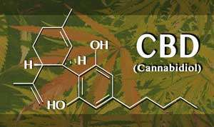 Chemical structure of Cannabidiol over marijuana leaf background