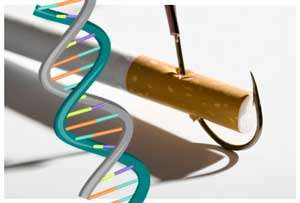 Illustration of a cigaretter with a hook in it and a DNA molecule superimposed