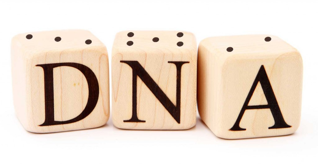 Three dice that spell out DNA