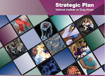 2010 Strategic Plan