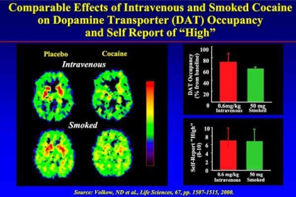 "Comparable Effects of Intravenous and Smoked Cocaine on Dopamine Transporter (DAT) Occupancy and Self Report of ""High"" - PET scans"