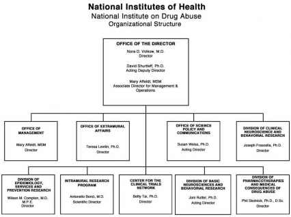 Organization Chart for NIDA, link below graphic for description