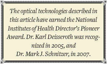 The optical technologies described in this article have earned the National Institutes of Health Director's Pioneer Award.  Dr. Karl Deisserothe was recognized in 2005, and Dr. Mark J. Schnitzer, in 2007