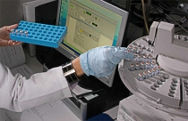 IRP scientists working with computer and samples