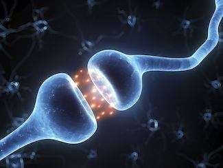 Illustration of a brain synapse showing flow of chemical between neurons