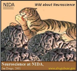 Winning Slogan: Wild About Neuroscience