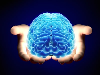 Image of two hands holding a brain