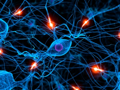 Illustration of interconnected neurons